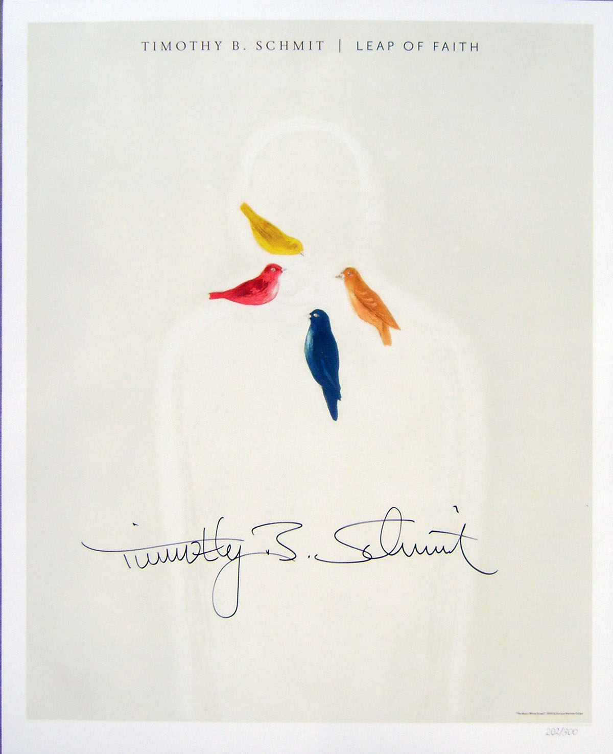 Timothy B Schmit - Poster - Leap of Faith #1